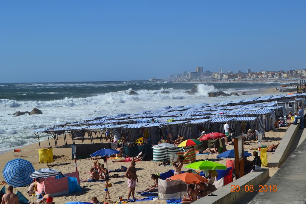 vila do conde singles dating site About usthe surf school coastline of vila do conde provides the teaching  / paddleboard rental lessons in azurara, portugal  lesson 1 single.