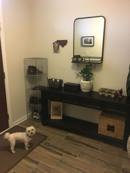 Foyer (dog not included)