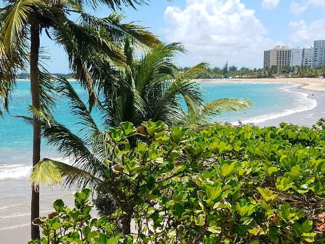 BEACHFRONT Studio, ISLA VERDE, Free Cancelation