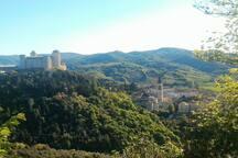 Colle Sant'Elia con la Rocca Albornoziana e, sullo sfondo, il campanile del Duomo