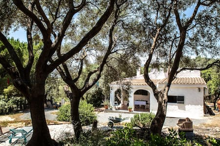 Lilly - Cozy little Villa among Olive Trees