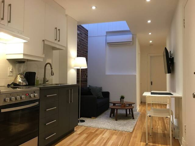 Long Term Rental in the Heart of Downtown