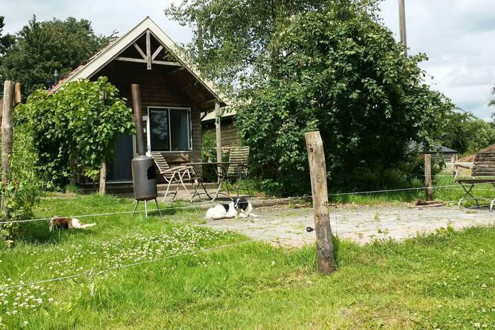 Landhuisje bij de bio-boer (voor 't hele gezin)
