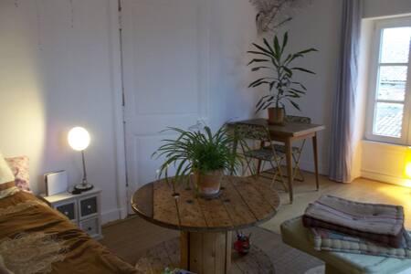 Appartement en plein coeur de ville - La Rochelle - Apartment