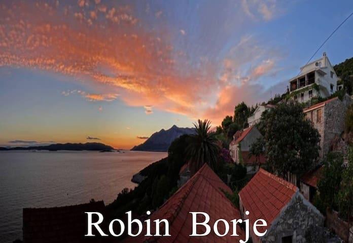 Robin  Borje