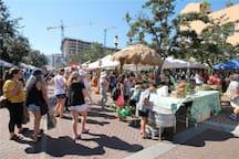 Downtown Market Produce, Eats, Plants, Artists