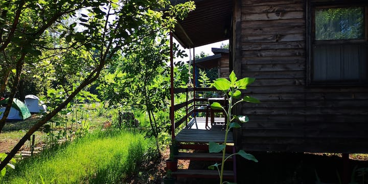 Tiny House İncir - Kayakoy Jungle Camping