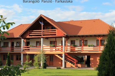 Barangoló Panzió - Lupeni - Domek gościnny