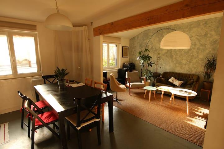 """Chambre """"cabane"""" à Avignon, quartier teinturiers 2"""
