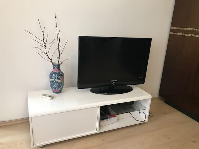 SAT-TV in living room