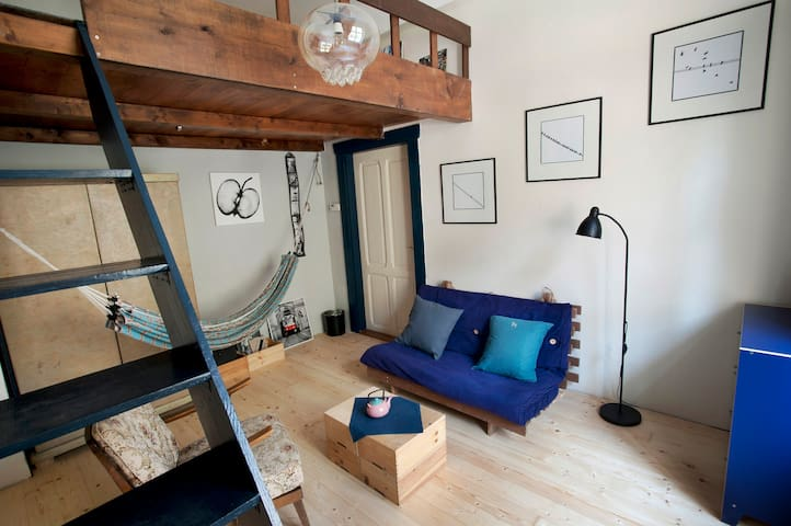 Žižkov Art Apartment