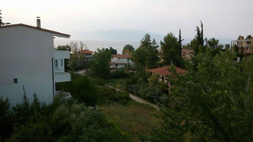 Lokridos Kedros, Arkitsa - Fthiotis