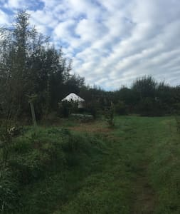 Yurt in The Nut Orchard - Fairy Cross