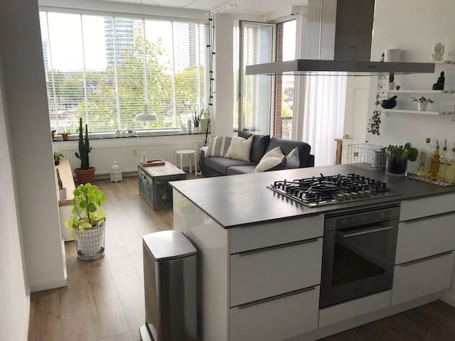 Lovely apartment in the City Centre of Rotterdam