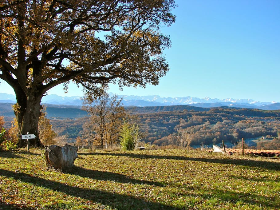 View from Farmhouse to Pyrenees