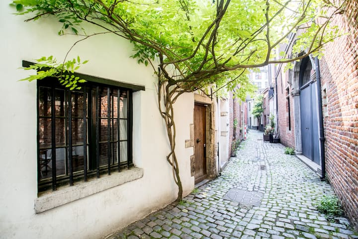 Cute 1596 house in romantic alley in Ste Catherine - Bruxelles - Huis