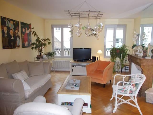 appartement centre quartier historique avec garage - Dole - Appartamento