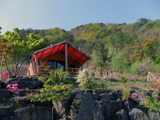강원도 영월 자연속에 통나무집 커플룸-작은소풍-