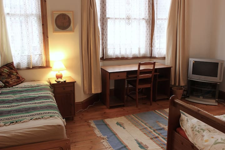 Huge room for up to 3 in beautiful, bohemian house - Londen - Huis