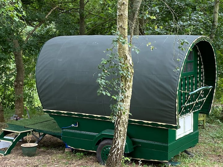 Willow- Romantic Bowtop Gypsy Wagon in the Woods.