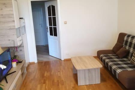 Prostorný, třípokojový byt s kuchyní a a lodžií.