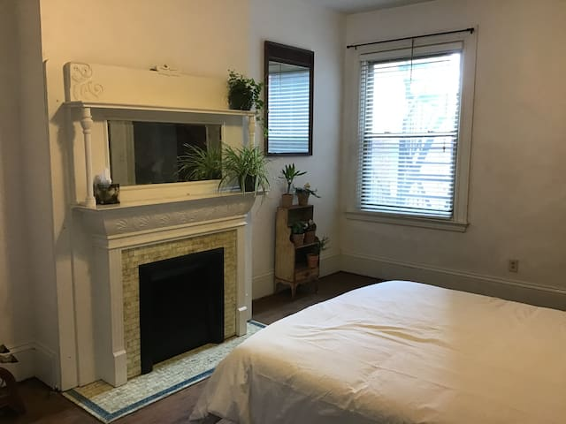 Spartan, affordable apartment in historic streets.