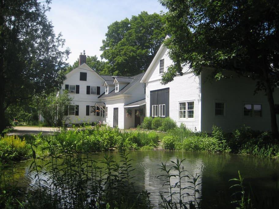 Exterior - Fountain Pond