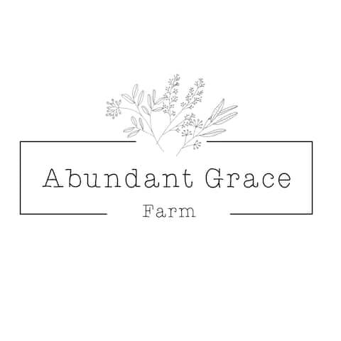 Przytulny domek w Abundant Grace Farm