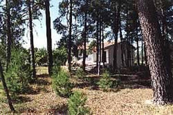 """Casa Cortijo """"El pinar de la Torrecilla"""" - Quesada"""