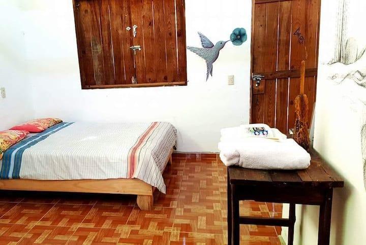 Casa Verde Xilitla by Rotamundos Estudio