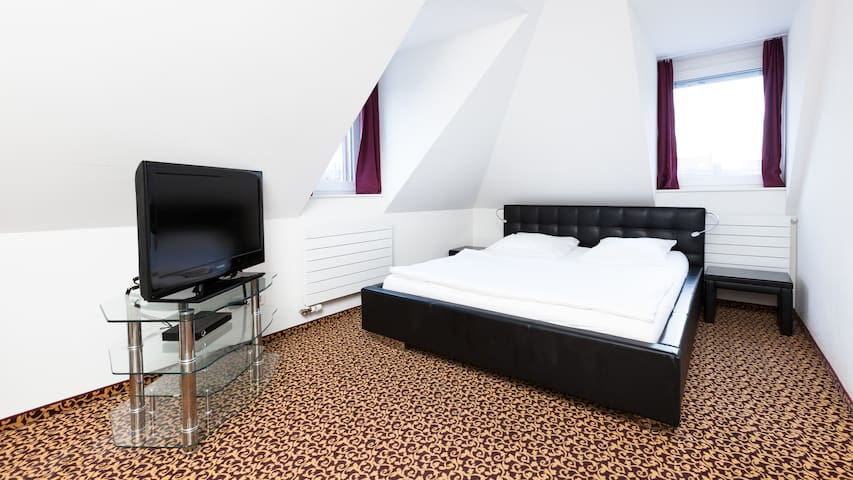 Swiss Star Center - Double Room