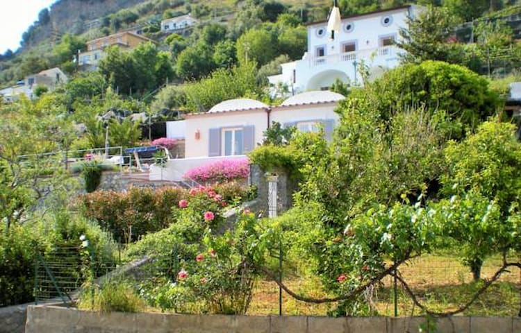 Garden Villa - be at the heart of the Amalfi Coast - Conca dei Marini - House