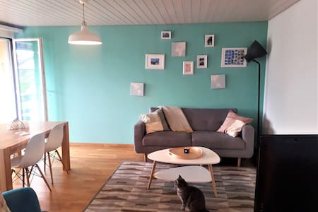 Bright apartment in the heart of Biel/Bienne