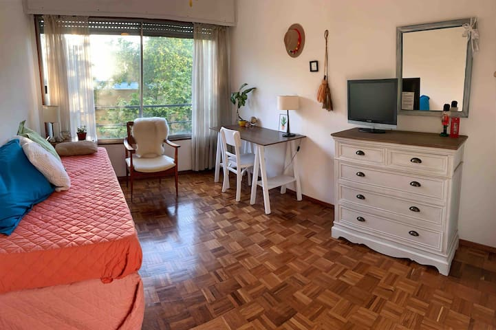 Private room in central apartment in Montevideo!