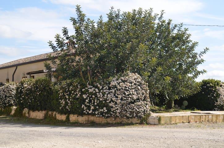La Foresteria di Giurfo - Licodia Eubea - House