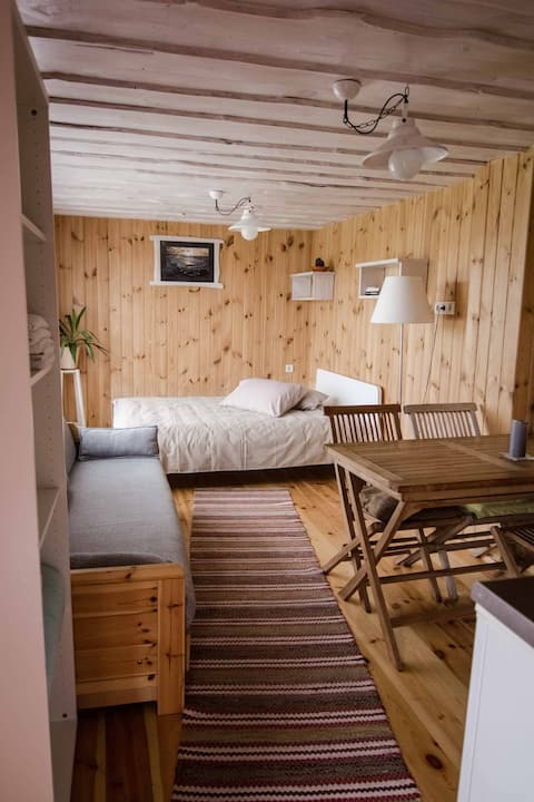 """Sauna apartment"" in Holiday House Dandzenieki"