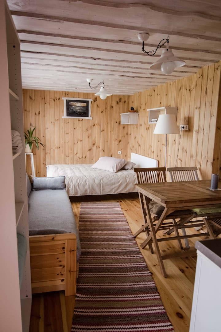 """""""Sauna apartment"""" in Holiday House Dandzenieki"""
