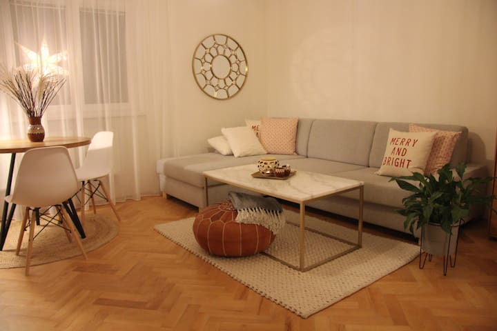 Quiet and homish apartment 25mins from city center