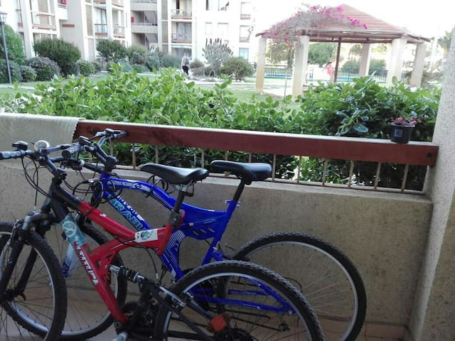 Apartment with bikes near to the beach and centre