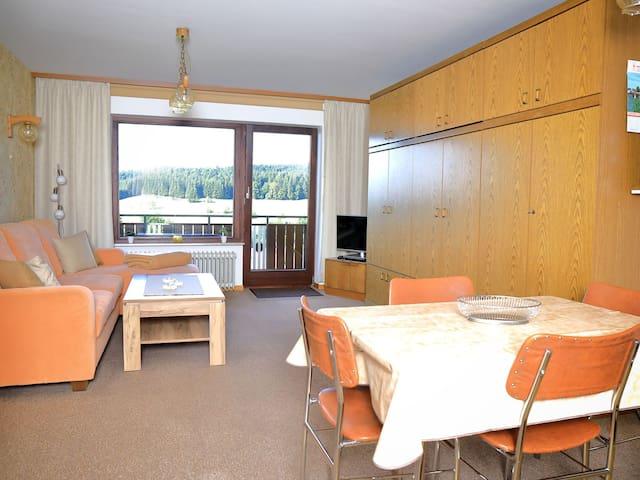 Haus Monika Ferienwohnungen, (Herrischried), Ferienwohnung Nr. 5, 62 qm, Balkon, 1 Schlafzimmer, max. 4 Personen