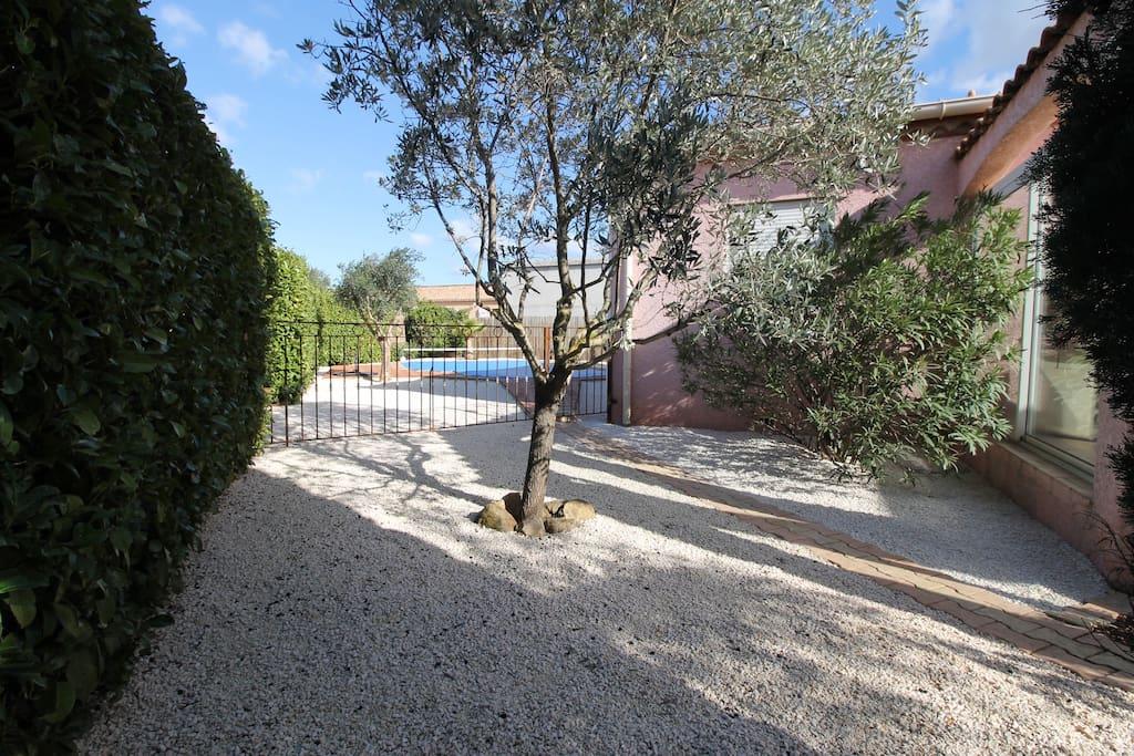 Garden to Swimming Pool