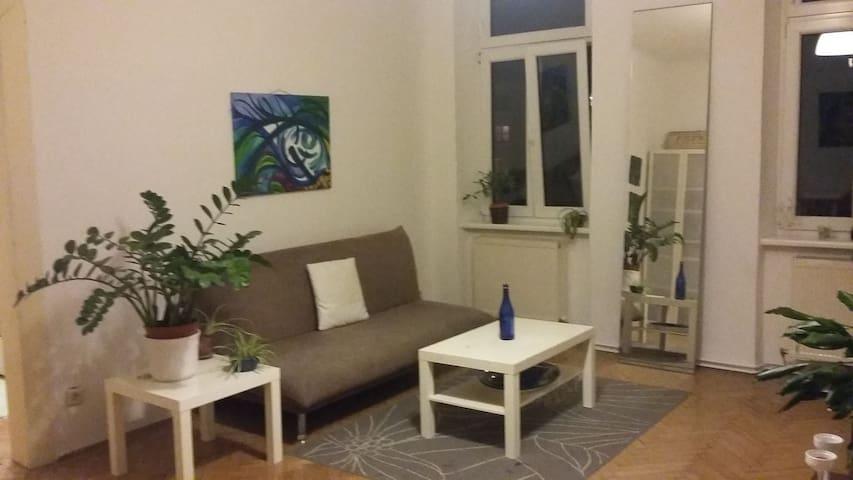 Gemütliche Wohnung direkt bei Ottakring Station - Wenen - Appartement