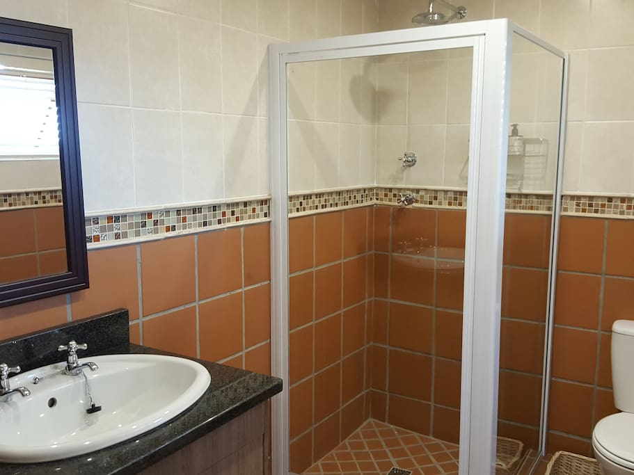 Spacious shower with single vanity basin and toilet