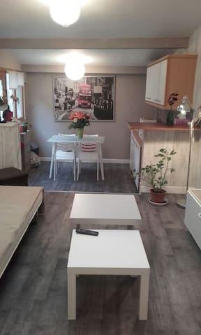 Gîte en touraine - Vernou-sur-Brenne - Apartment