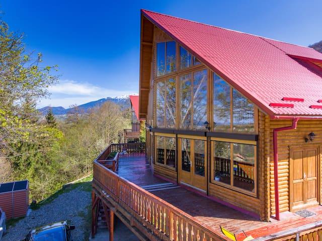 Carpathian Log Home with a view