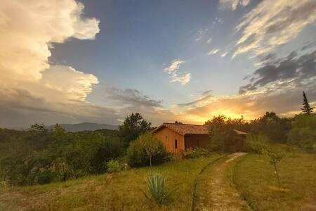 """Sud Ardèche : """"Esprit cabane dans les arbres..."""""""