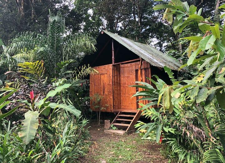 Punta Mona Private Cabin