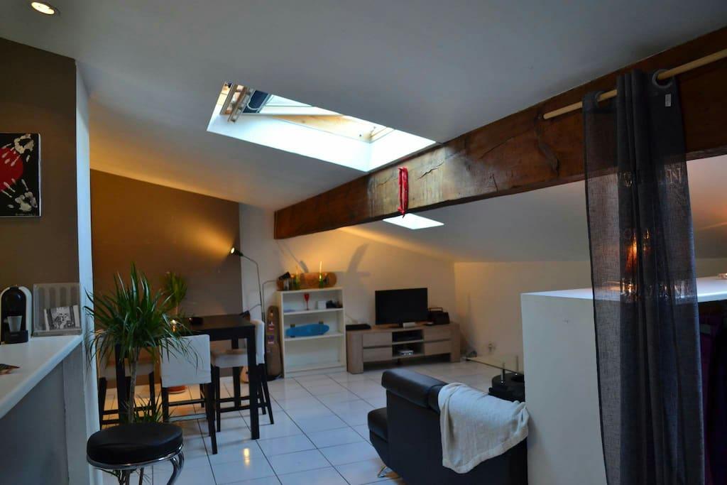Loft 53m2 hyper centre tourny appartements louer - Loft a louer bordeaux ...
