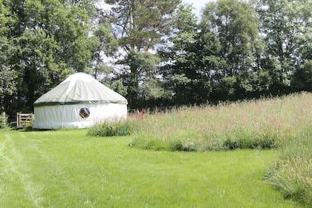 Denmark Farm Glamping Yurt - Lampeter