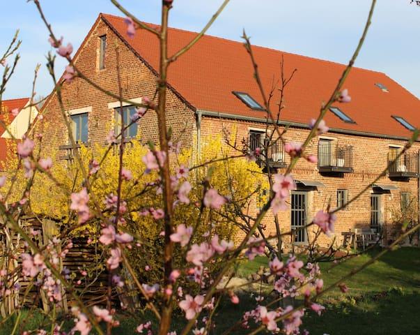 2XFW ab 38€ Dreiseiten Sternenhof vermieten - Bad Belzig - Huoneisto
